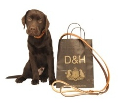 D&H Luxury Collars