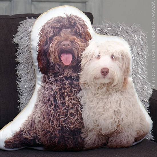 Adorable Dog Cushions