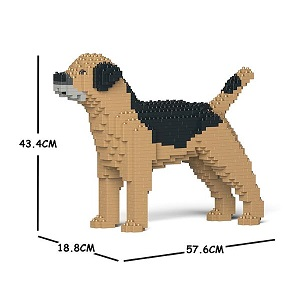 Border Terrier Jekca Medium