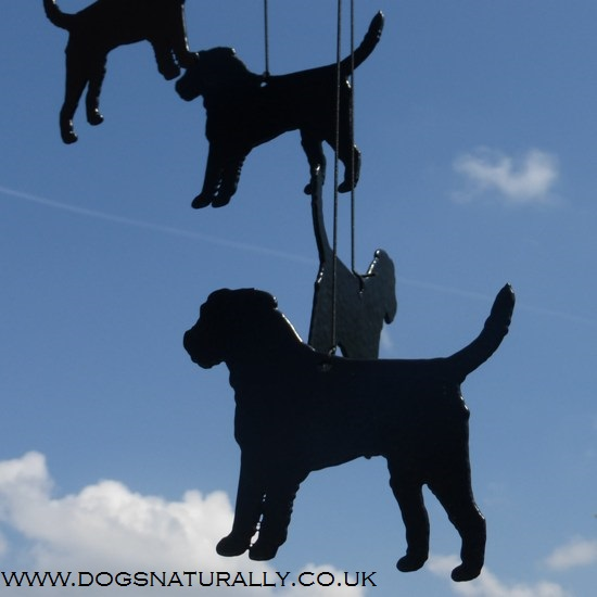 Border Terrier Windchimes