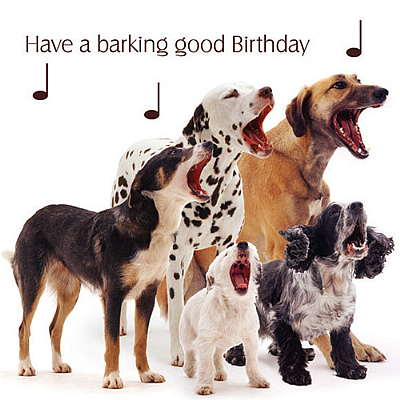 Dog Song Birthday Card