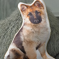 German Shepherd Puppy Cushion