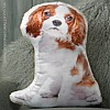 Blenhiem Cavalier King Charles Cushion