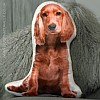 Golden Cocker Spaniel Cushion