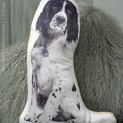 Springer Spaniel Cushion (Black & White)