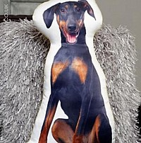 Doberman Pinscher Cushion