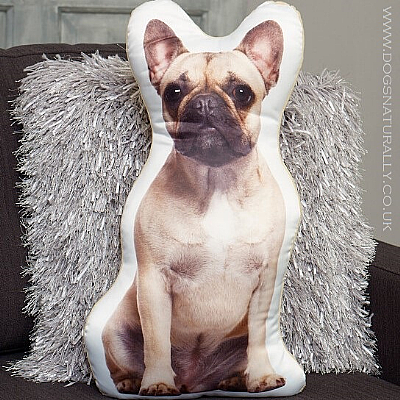 French Bulldog Cushion (Fawn)