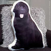 Newfoundland Cushion