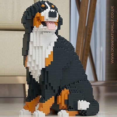 Bernese Mountain Dog (Sat) Jekca Available in 2 Sizes