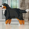 Bernese Mountain Dog Jekca (Wag)
