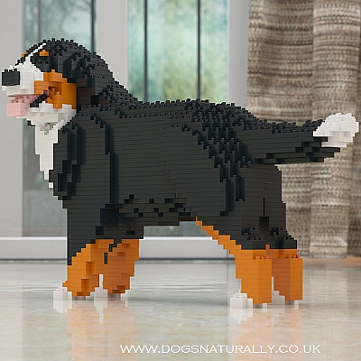 Bernese Mountian Dog (Wag) Jekca Available in 2 Sizes