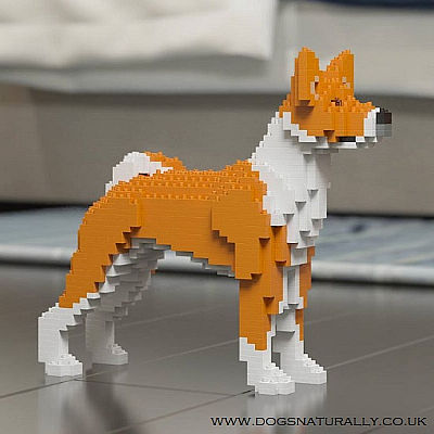 Basenji Jekca Available in 2 Colours & 2 Sizes