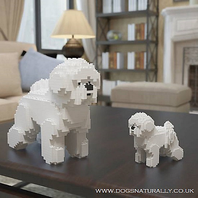Bichon Jekca Available in 2 Sizes