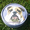 English Bulldog Purse - Lilac