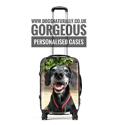 Personalised Cabin Bag - Small Suitcase