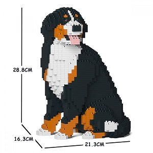 Bernese Mountain Dog Jekca Small (Sat)