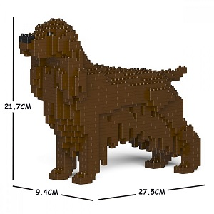 English Cocker Spaniel (Liver) Jekca Small