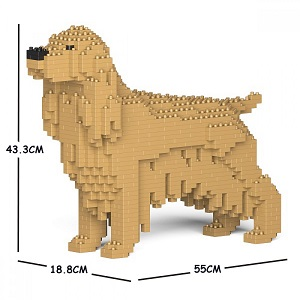 English Cocker Spaniel Jekca Medium (Gold)