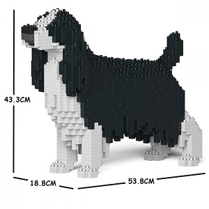 English Springer Spaniel Jekca Medium (Black & White)
