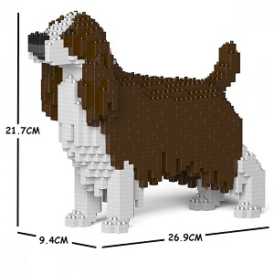 English Springer Spaniel (Liver) Jekca Small