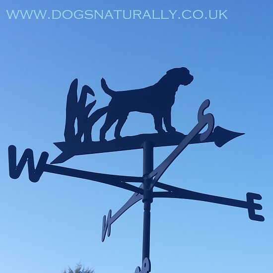 Afghan Hound Weather Vane