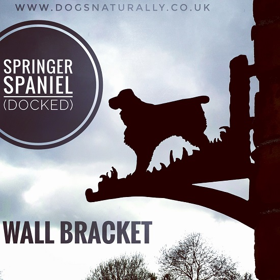 English Springer Wall Bracket