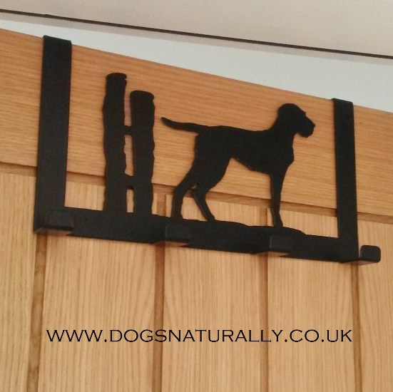 Wire Haired Vizsla Over Door Hanger