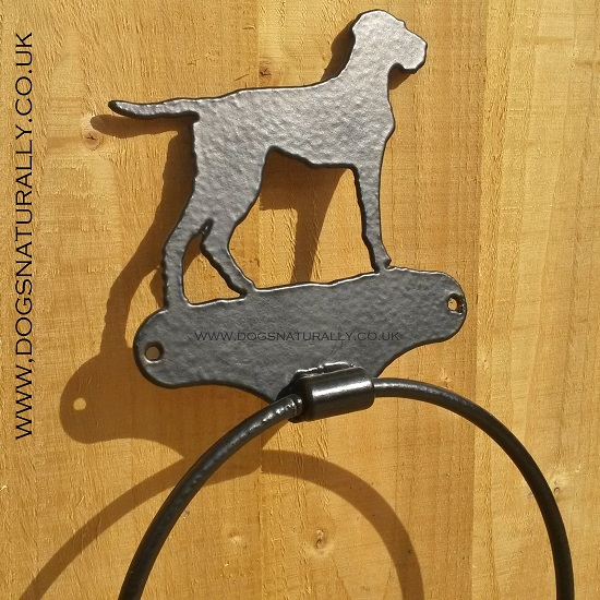 Wirehaired Vizsla Towel Hoop