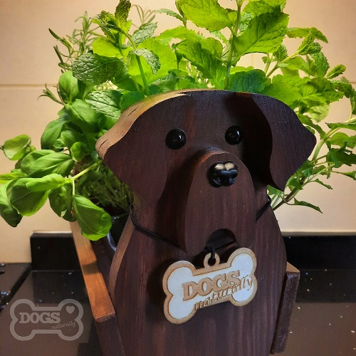 Wooden Dog Fresh Herb Stand (Labrador)