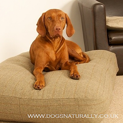 Premier Tweed Dog Bed (3x Colours)