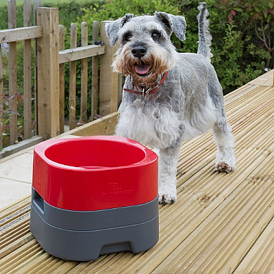 Pet Weighter Dog Bowl Red