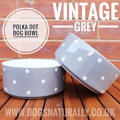 Vintage Grey Polka Dot Dog Bowl (Large)