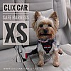 Clix Car Safe Harness XS In Use Yorkie
