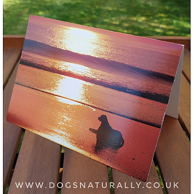 Dog Loss - Sympathy Card