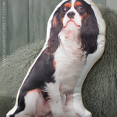 Cavalier King Charles Cushion (Tri-Colour)