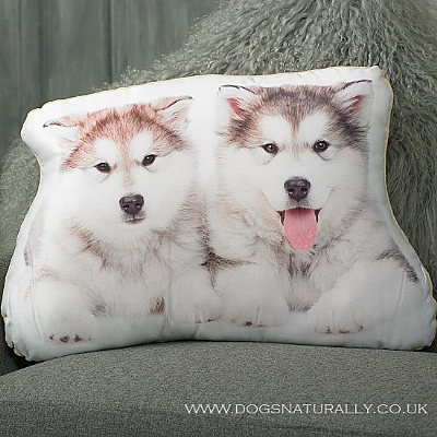 Alaskan Malamutes Cushion
