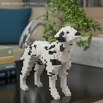 Dalmatian Jekca Available in 2 Colours & 2 Sizes