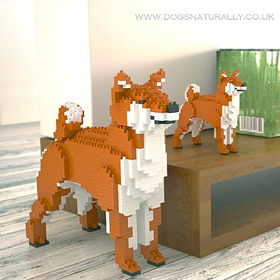 Shiba Inu Jekca Available in 3 Colours & 2 Sizes