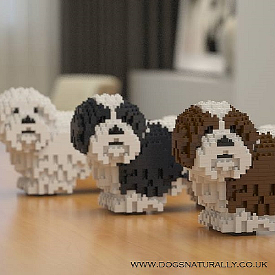 Shih Tzu Jekca Available in 5 Colours & 3 Sizes