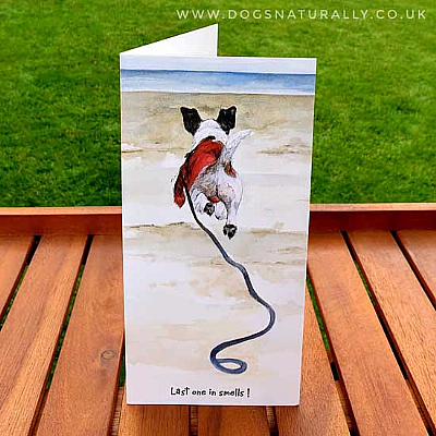 Last one in Jack Russell Dog Lover Card