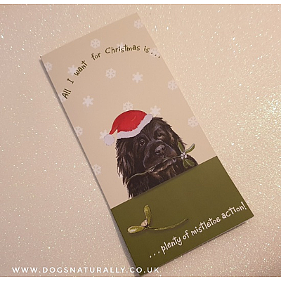 Mistletoe Action Newfoundland Dog Lover Christmas Card
