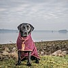 Aubergine/Plum Drying Coat - Labrador - Country Style