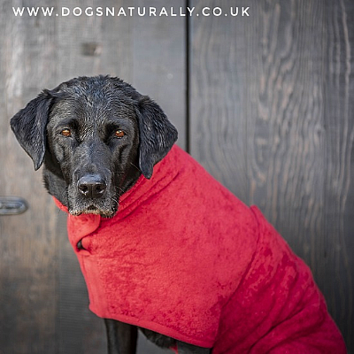 Dog Drying Coat - Red
