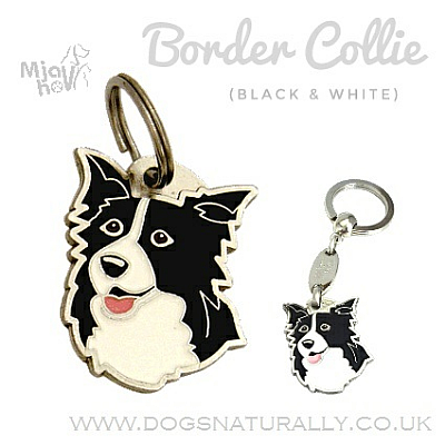Border Collie Dog Tag (Black & White)